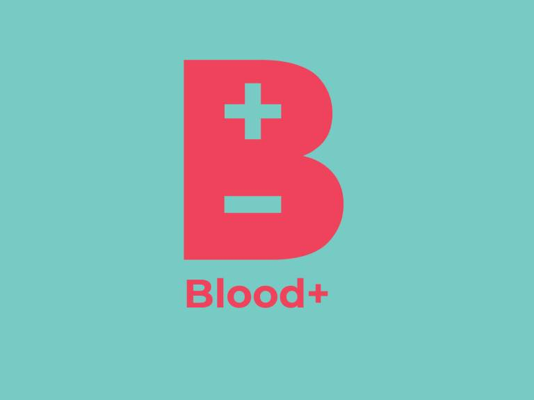blood+ portfolio